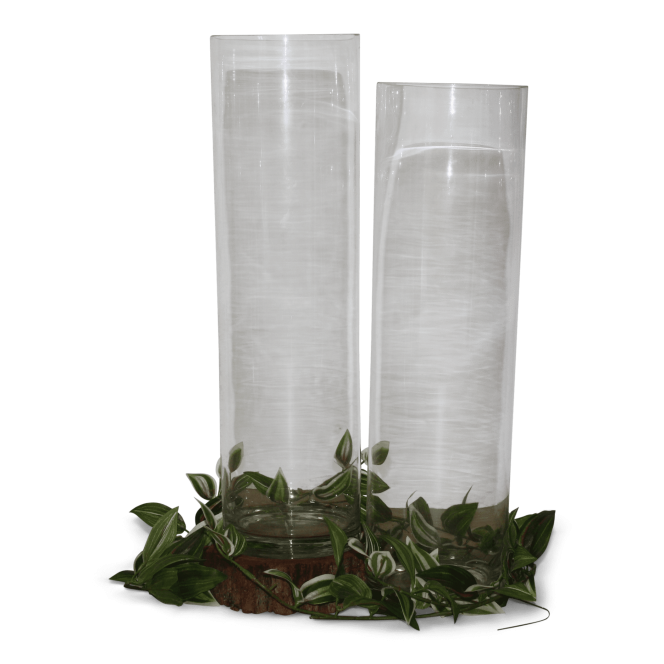 Glass Tall Cylinder Vases