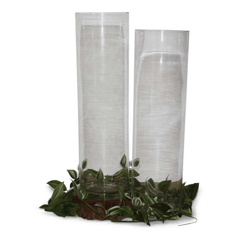 Glass Tall Cylinder Vases - Hero Image