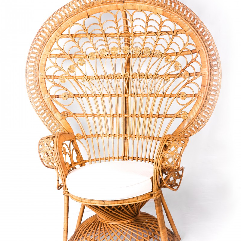 Peacock Chair - Hero Image