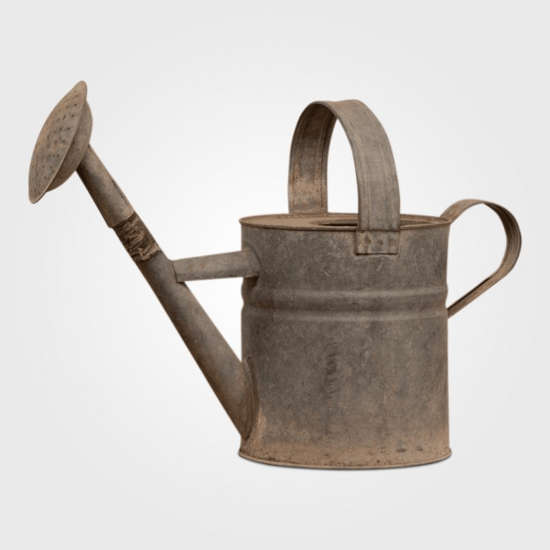 Watering Can (Medium) - Hero Image